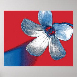 Un juguetón corrige de una pequeña flor póster