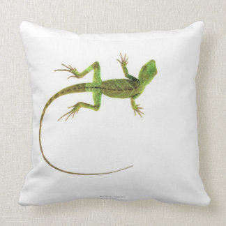 Un lagarto en la tierra blanca pura almohadas