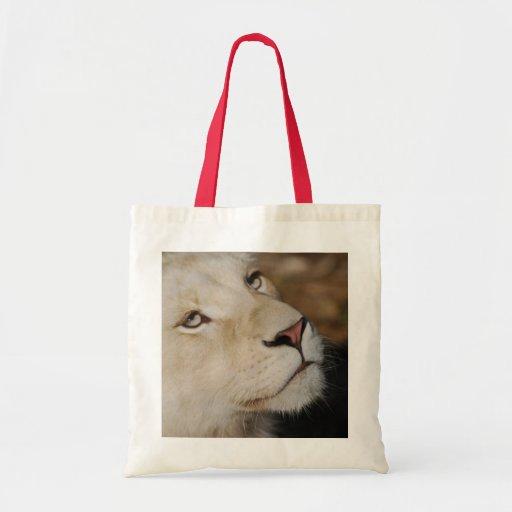 Un león apacible bolsas