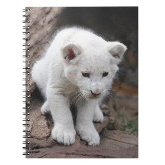Un león lindo del blanco del bebé cuadernos