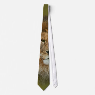 Un león majestuoso corbata personalizada