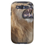 Un león masculino maduro (Panthera leo) en el Savu Samsung Galaxy S3 Carcasas