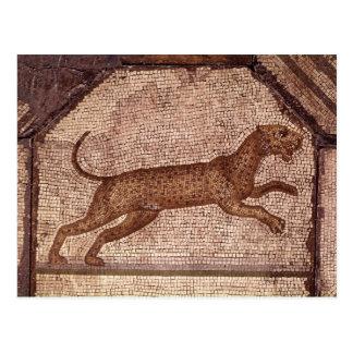 Un leopardo tarjetas postales