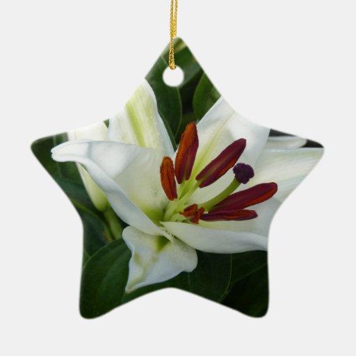 Un Lilly blanco Adorno Navideño De Cerámica En Forma De Estrella