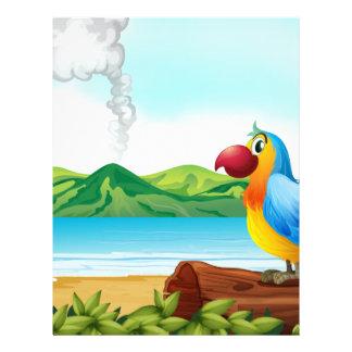 Un loro colorido en la playa plantillas de membrete