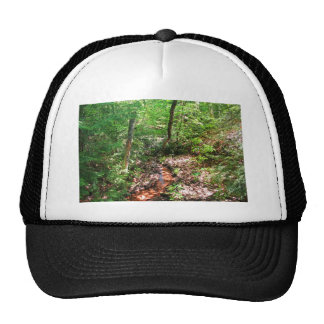 Un lugar encantado gorra