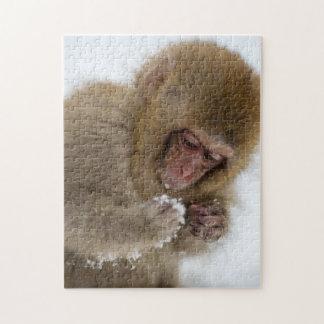 Un Macaque japonés del bebé (o mono de la nieve) Puzzle
