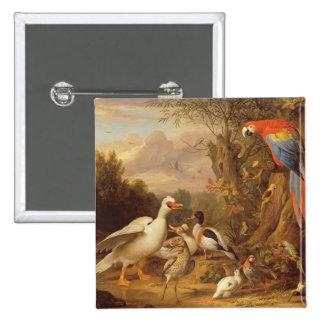 Un Macaw, patos, loros y otros pájaros en tierras Pin Cuadrada 5 Cm