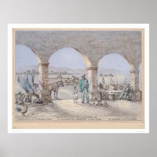 Un magnate de California en su casero (1317) Poster