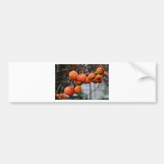 Un manojo de manzanas rojas del otoño etiqueta de parachoque