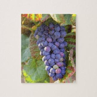 Un manojo de uvas del pinot negro en un Chambertin Puzzle