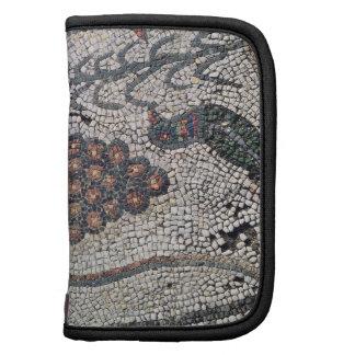 Un manojo de uvas y de un pájaro: Mosaico romano d Organizadores