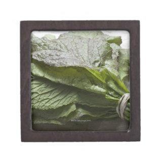 Un manojo de verdes de mostaza frescos, de un gran caja de recuerdo de calidad