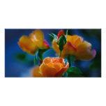 Un manojo hermoso de rosas y de significado tarjeta fotográfica