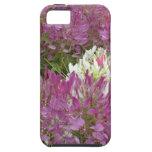 Un mar de flores púrpuras en verano de la plena fl iPhone 5 Case-Mate cobertura