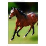 Un medio galope de los caballos tarjetas