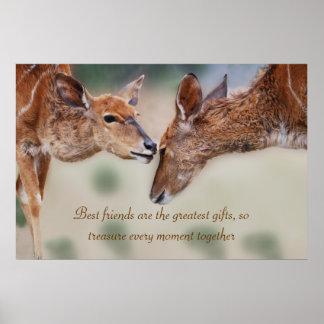 Un mejor amigo de los ciervos póster