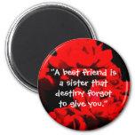 """""""Un mejor amigo es imán de una hermana"""""""