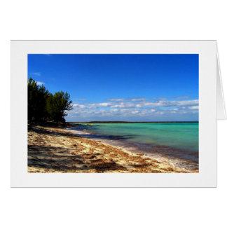 Un momento de Bahama Felicitación