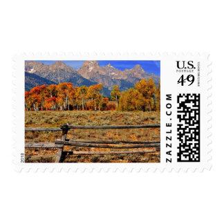 Un momento en Wyoming en otoño Estampilla