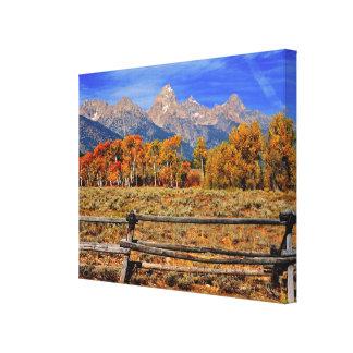 Un momento en Wyoming en otoño Lona Envuelta Para Galerias