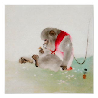 Un mono asentado observando un insecto póster