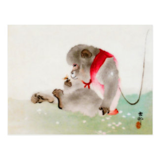 Un mono asentado observando un insecto tarjetas postales