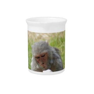 Un mono que goza de un helado jarras de beber