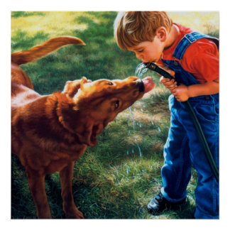 Un muchacho y su perro riegan la sed de la póster