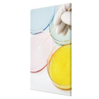 Un muestreo con guantes plástico de la mano del pe impresión en lienzo estirada