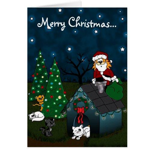 'Un navidad del Caboodle Tarjetas