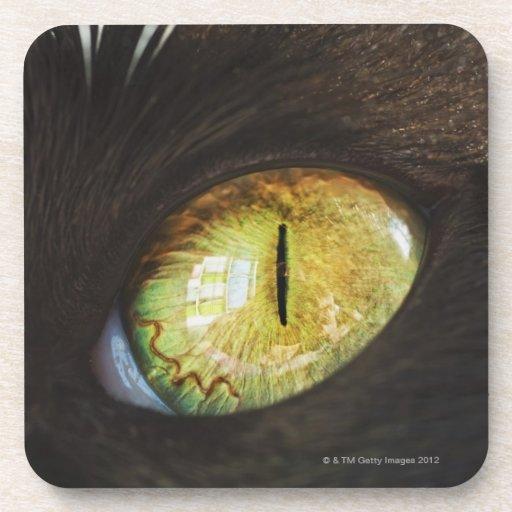 Un ojo de gato posavaso