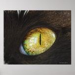 Un ojo de gato póster