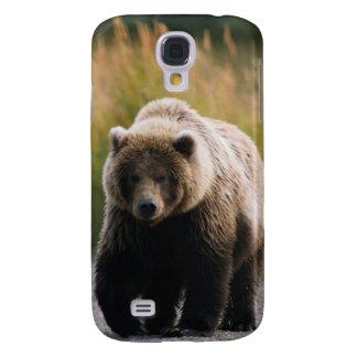 Un oso de Brown que camina en un rastro