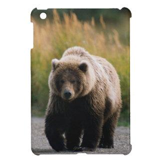 Un oso de Brown que camina en un rastro iPad Mini Carcasas
