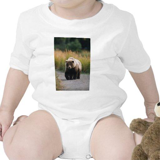 Un oso de Brown que camina en un rastro Trajes De Bebé