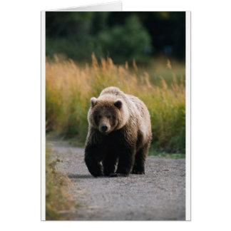Un oso de Brown que camina en un rastro Tarjeta De Felicitación