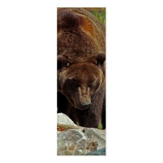 Un oso de una señal tarjetas de visita mini
