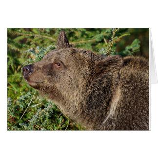 Un oso grizzly sonriente tarjeta de felicitación