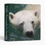 Un oso polar apenas que se enfría