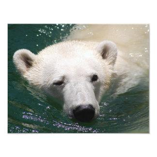 """Un oso polar apenas que se enfría invitación 4.25"""" x 5.5"""""""