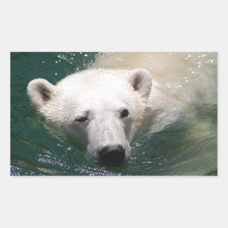 Un oso polar apenas que se enfría pegatina rectangular