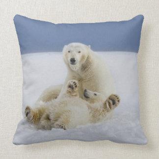 Un oso polar femenino y su cachorro juegan en la n almohadas