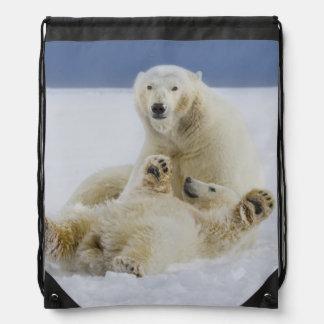 Un oso polar femenino y su cachorro juegan en la n mochila