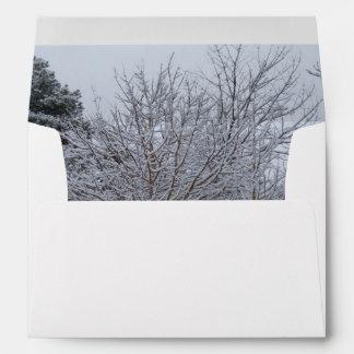 Un país de las maravillas del invierno de árboles  sobres