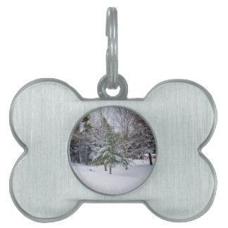 Un paisaje nevoso del invierno de la pequeña cala placas de nombre de mascota