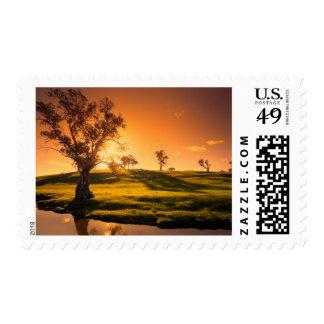 Un paisaje rural de las colinas de Adelaide Sello