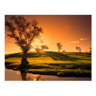 Un paisaje rural de las colinas de Adelaide Tarjeta Postal