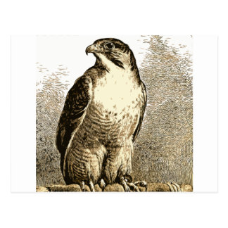 Un pájaro 59 tarjeta postal
