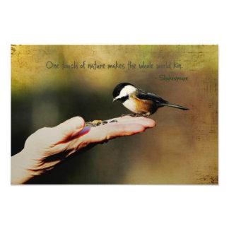 Un pájaro en la mano fotografias